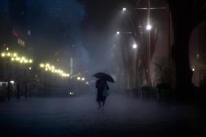 Braving the Night Rain by dannyst