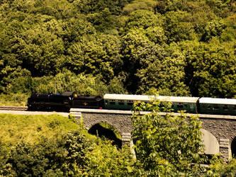 Steam Train by dramaticpeanut