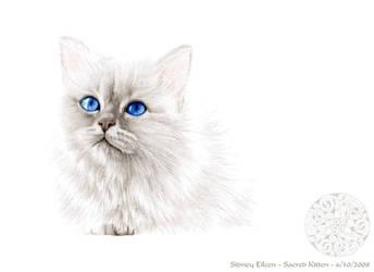 Sacred Kitten by sidneyeileen