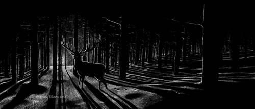 The Longest Night by sidneyeileen