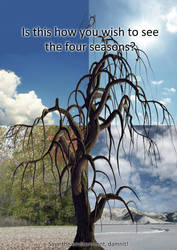 Four seasons by thefreaks