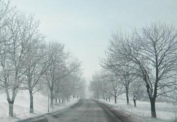 Roads by Amandoi
