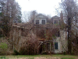 George Veit Estate by Vellosia