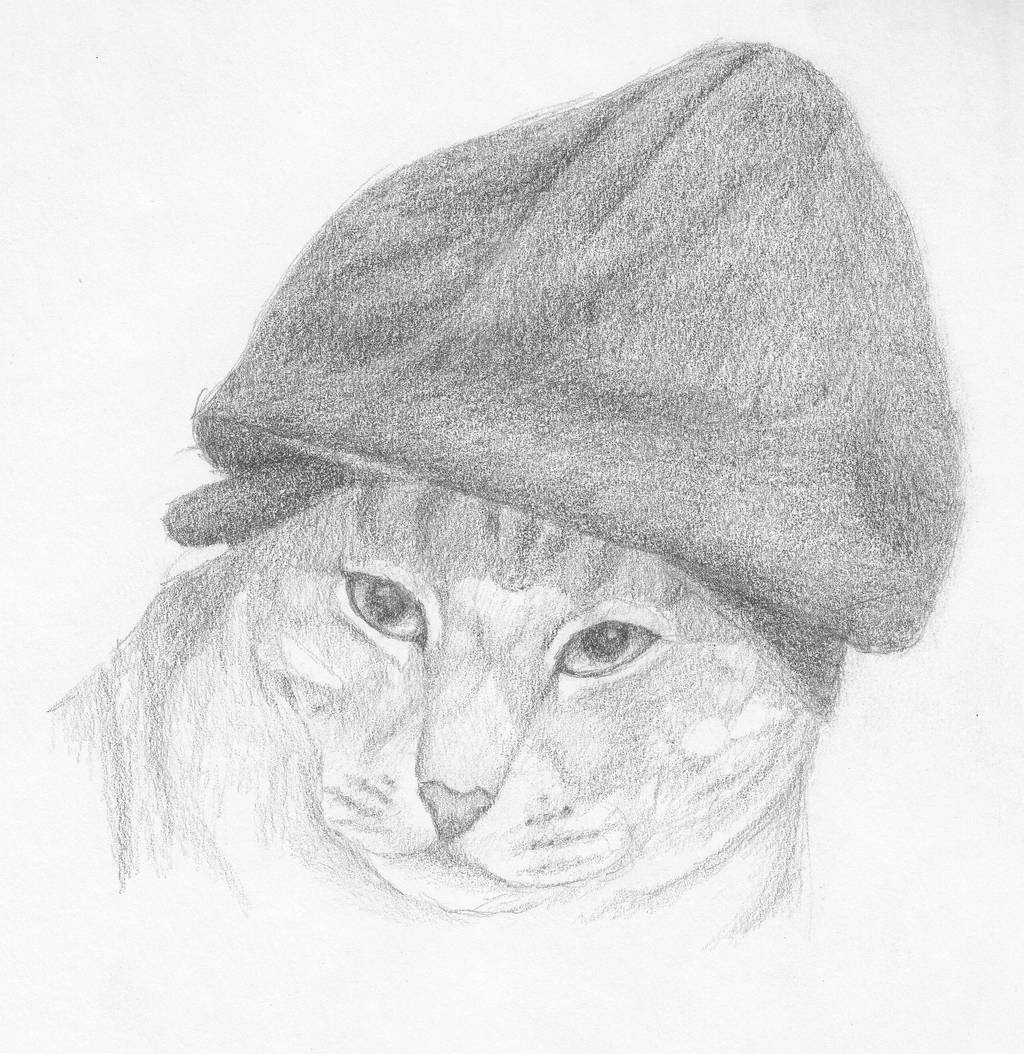 puss_and_beanie_by_morowyn_d6x0wig-fullview.jpg