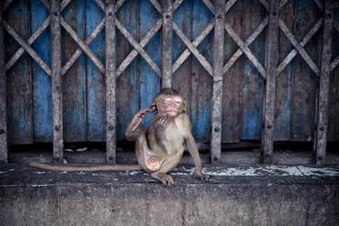 Thailand - 21 by bLuesounet