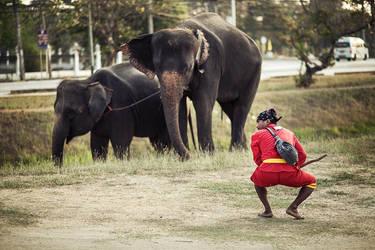 Thailand - 9 by bLuesounet