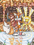 Tails in Cave by DragonQuestHero