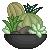 +|F2U|+ Cacti Terrarium Avatar