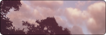 |F2U| Purple Sky With Trees Long Divider by RariDecor