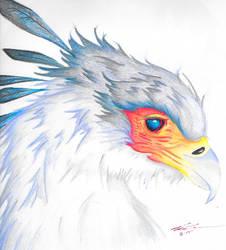 Secretary Bird by PDInk