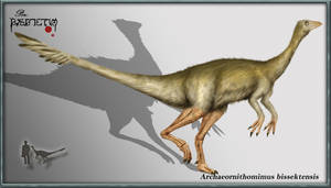Archaeornithomimus bissektensi by karkemish00