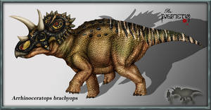 Arrhinoceratops brachyops by karkemish00