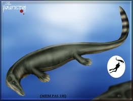 Undetermined mosasaur by karkemish00