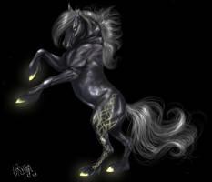 celtic horse by wang-POW