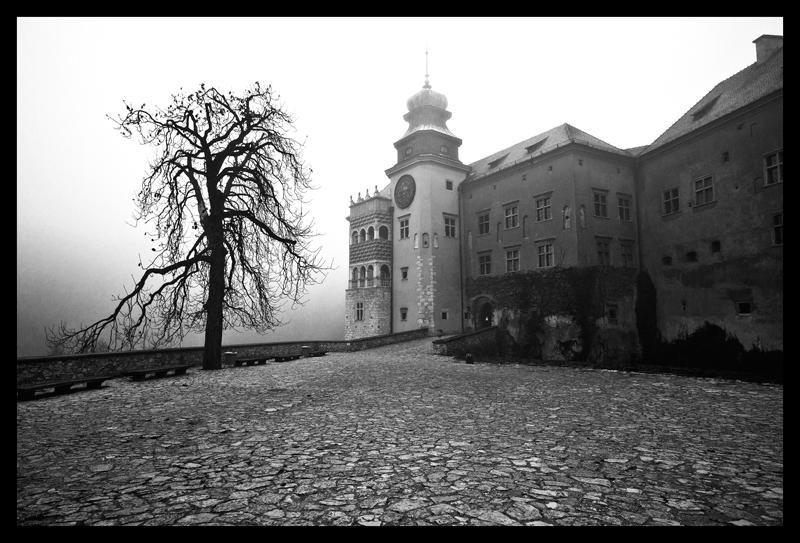 PIESKOWA SKALA CASTLE by KervanoK