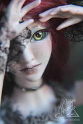 Doll series Nana. Robin by AnikoRi