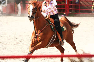 Barrel Racing - III by froggynaan