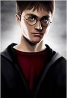 Harry Potter by fangdarien