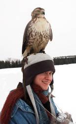 Hawk Hat by vantid