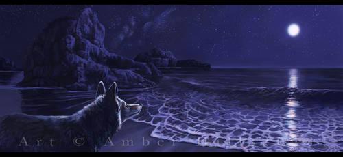 Coyote Beach by vantid