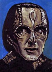 Garak from Star Trek: Deep Space 9 by amybalot