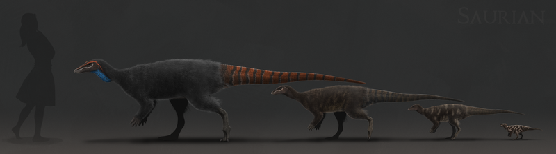 Saurian Thescelosaurus Ontogeny by ChrisMasna