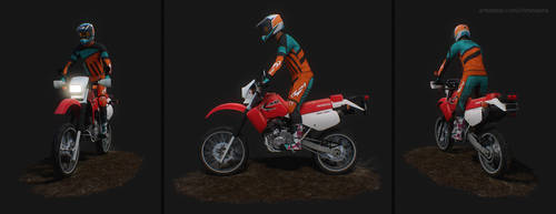 Lowpoly Dirt Rider by ChrisMasna