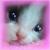 Kitty Face Plz by RoxasPikachu