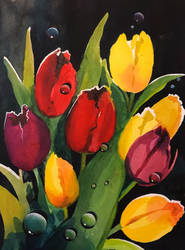 Tulip Drops by Flingling