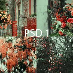 PSD 1 by AlexRow122