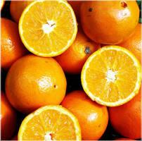 orange. by schelmin