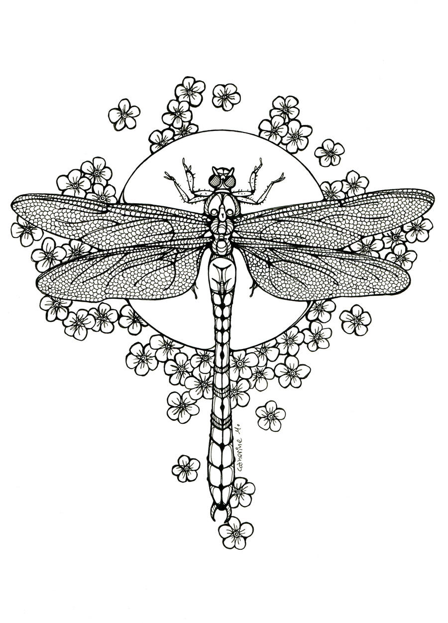 Dragonfly - lineart by CathM