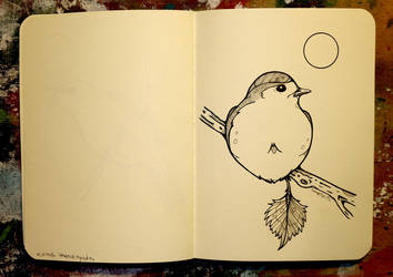 Inktober 16 - European robin by CathM