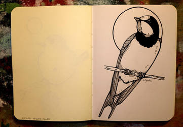 Inktober 17 - Barn swallow by CathM