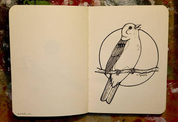 Inktober 21 - Yellowhammer by CathM