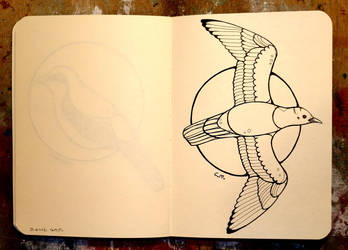 Inktober 28 - Black-headed gull by CathM