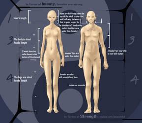 Human Anatomy Study by jcevil