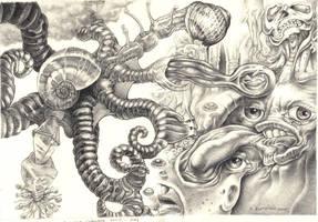 Octopus's garden by Bernardumaine