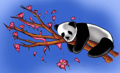 Panda cherry blossom by cherripandi