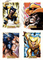 Wolverine Sketch Cards 02 by Cinar