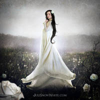 The Garden of Rose by Juli-SnowWhite