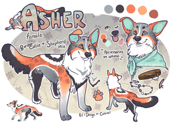 Asher by colonel-strawberry