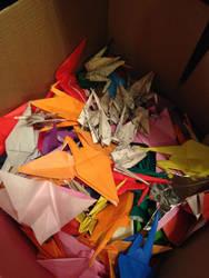 box of cranes by Sadakocranes
