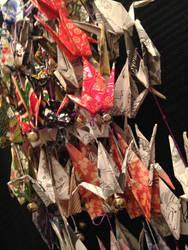 group of cranes by Sadakocranes