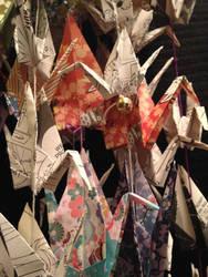 all the cranes by Sadakocranes