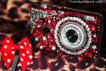 camera deco by CandyStripedCafe