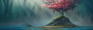 Cherry Blossom by TomPrante