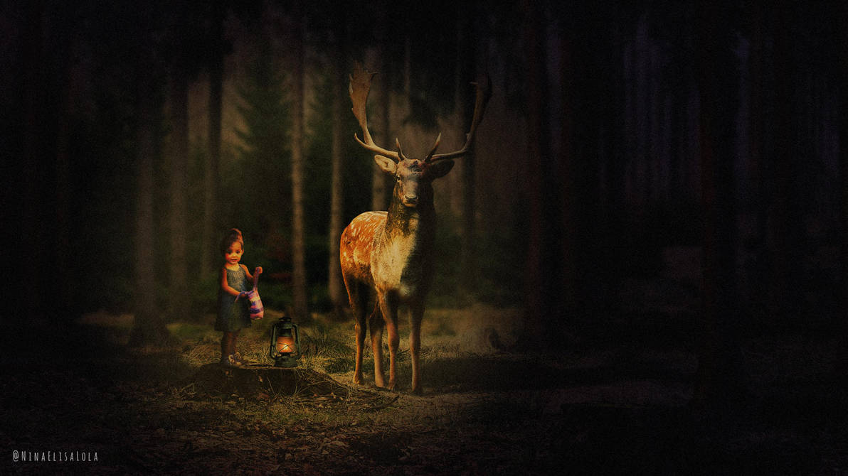 In the woods by Nientjesweb