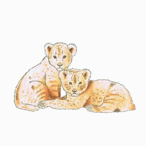 Leeuwtjes by Nientjesweb