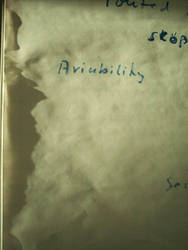 Aviability -or- Leadership ist der Socke des Werts by MrSchnada